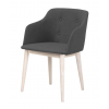 CORPUS Arm Chair w:RIO A190
